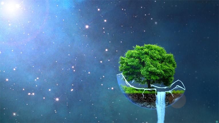 Невероятное и красивое дерево - картинки и изображения 21