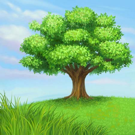 Невероятное и красивое дерево - картинки и изображения 23