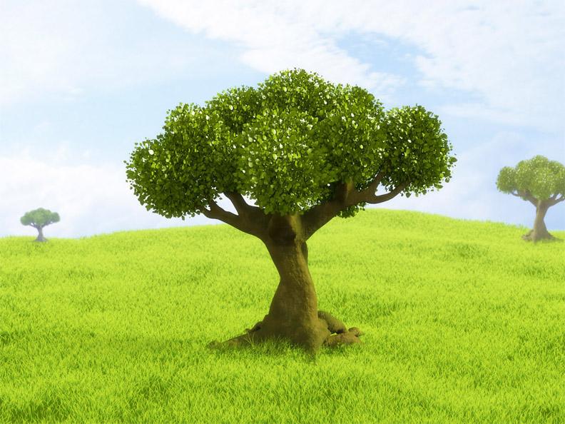 Невероятное и красивое дерево - картинки и изображения 5