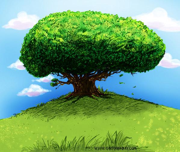 Невероятное и красивое дерево - картинки и изображения 7