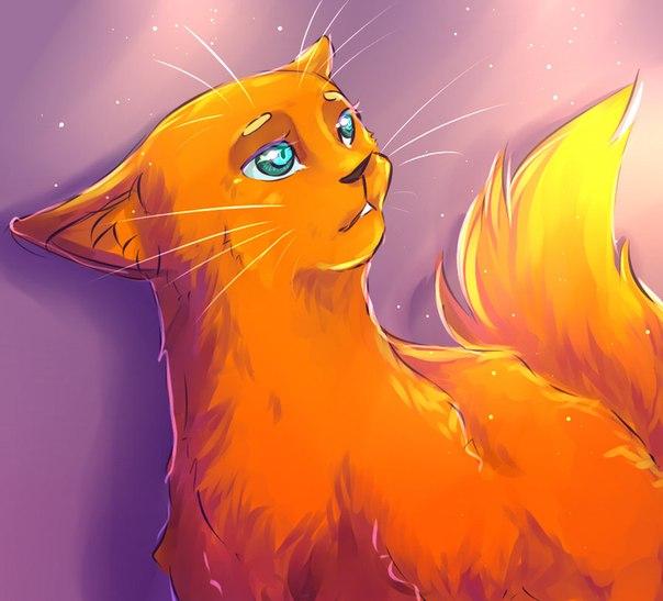 Необычные и красивые картинки Коты Воители - подборка 20 штук 1