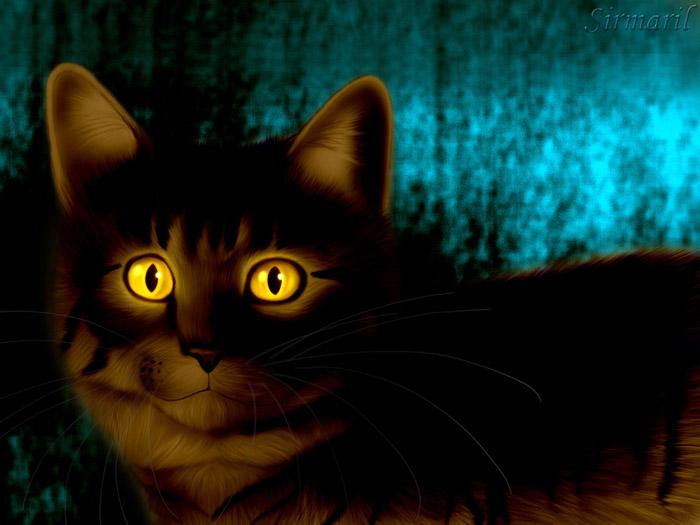 Необычные и красивые картинки Коты Воители - подборка 20 штук 13