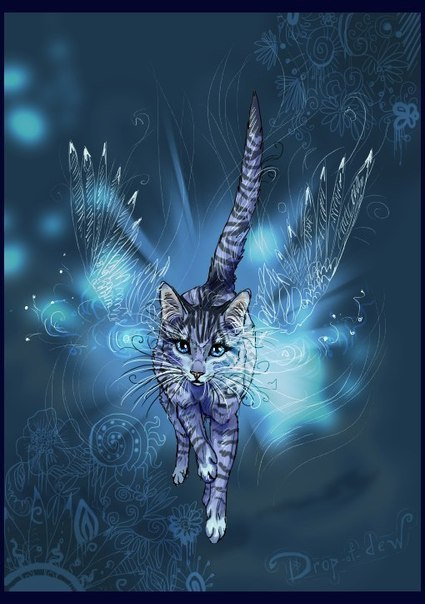 Необычные и красивые картинки Коты Воители - подборка 20 штук 2