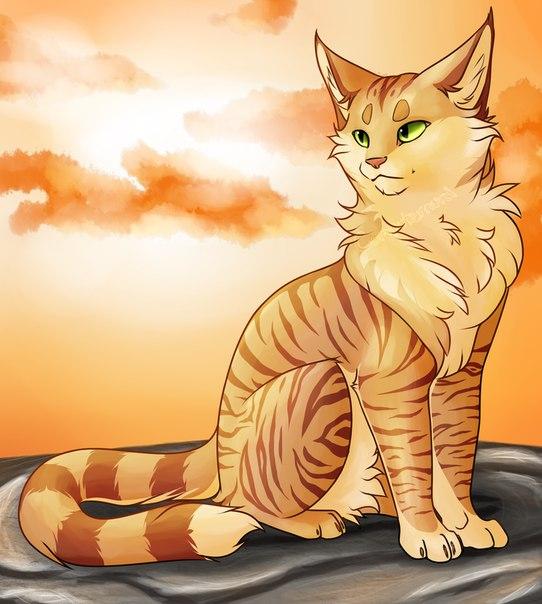 Необычные и красивые картинки Коты Воители - подборка 20 штук 7