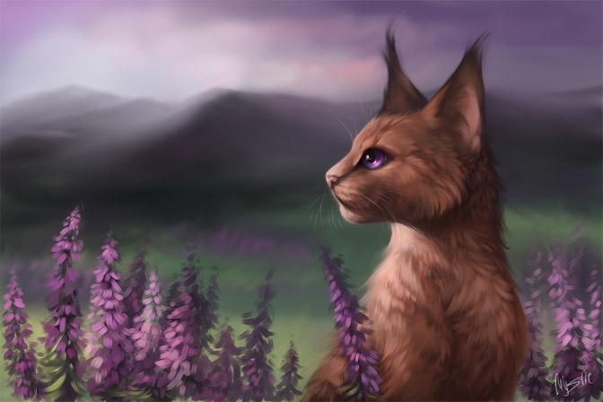Необычные и красивые картинки Коты Воители - подборка 20 штук 9