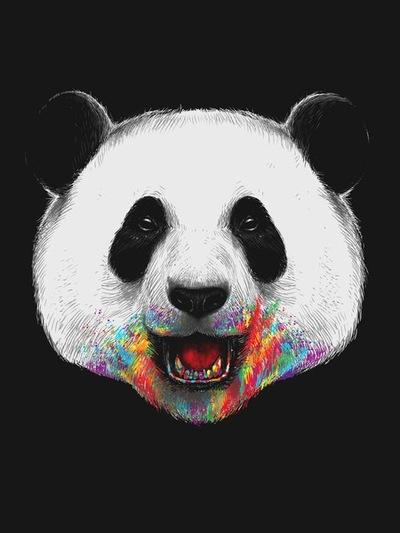 Панды очень красивые и прикольные картинки, арты, фото - подборка 1