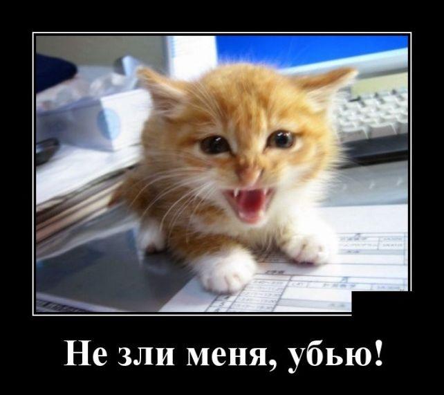 Подборка веселых и смешных демотиваторов за осень 2018 - №46 12
