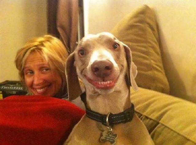 Прикольные и смешные картинки улыбки - забавная подборка 2