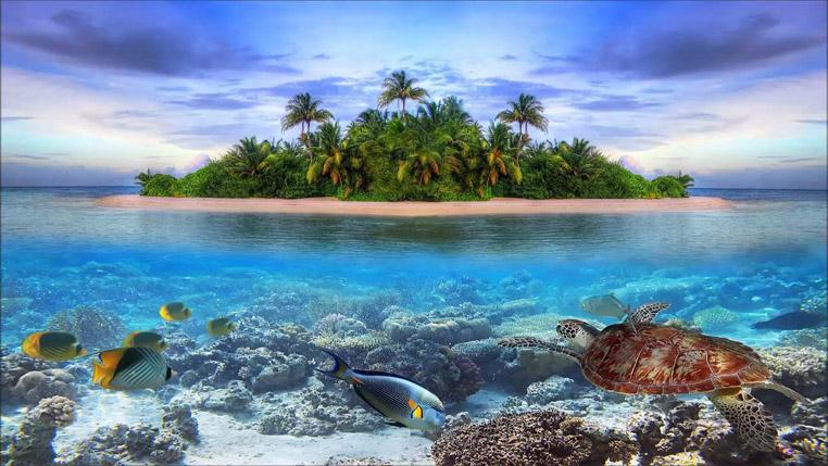 Таинственный и необитаемый остров - удивительные картинки 4