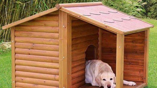 Как построить собачью будку своими руками - лучшие советы 1