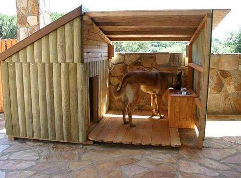 Как построить собачью будку своими руками - лучшие советы 3