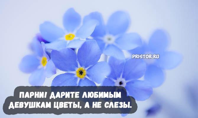 Красивые высказывания и цитаты про цветы со смыслом - подборка 8