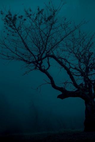 Красивые и интересные картинки Мистика на заставку телефона 6