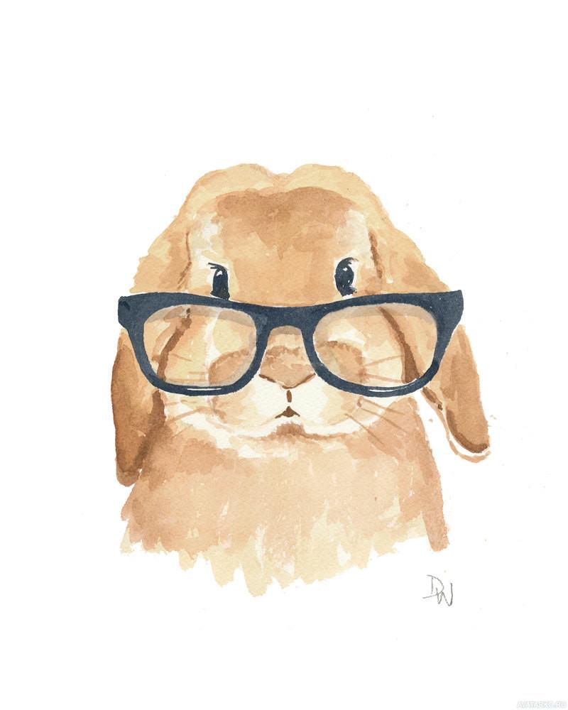Красивые и простые рисунки, картинки кроликов для срисовки - сборка 9