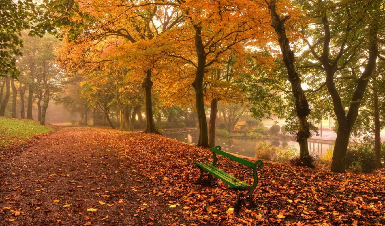 Красивые и удивительные картинки осень в парке - подборка фото 4