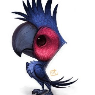 Красивые картинки и рисунки попугаев для срисовки для детей 13