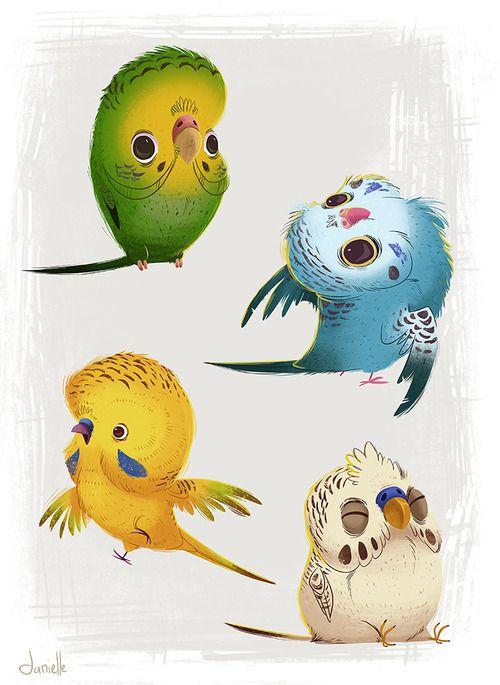 Красивые картинки и рисунки попугаев для срисовки для детей 15