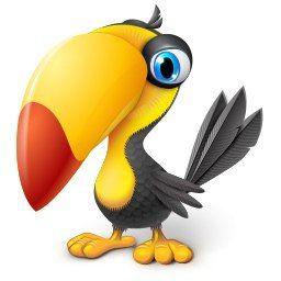 Красивые картинки и рисунки попугаев для срисовки для детей 4