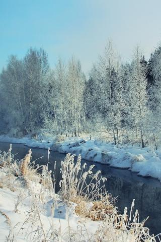 Обои и картинки про зиму на заставку телефона - самые красивые 1