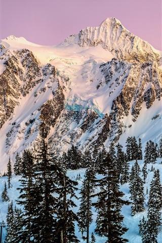 Обои и картинки про зиму на заставку телефона - самые красивые 10