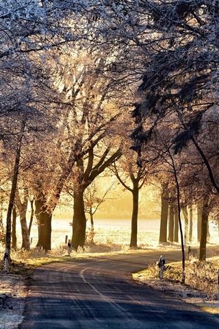 Обои и картинки про зиму на заставку телефона - самые красивые 15