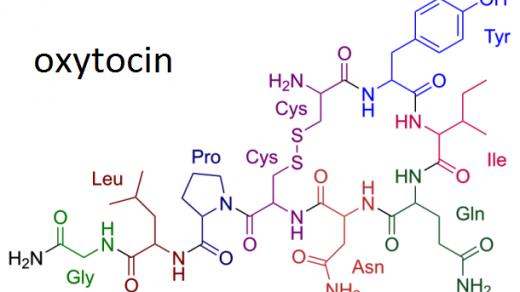 Окситоцин гормон доверия и нежной привязанности 1