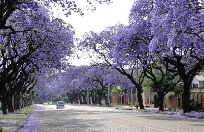 Самые красивые фото и картинки улицы - подборка 20 фотографий 10