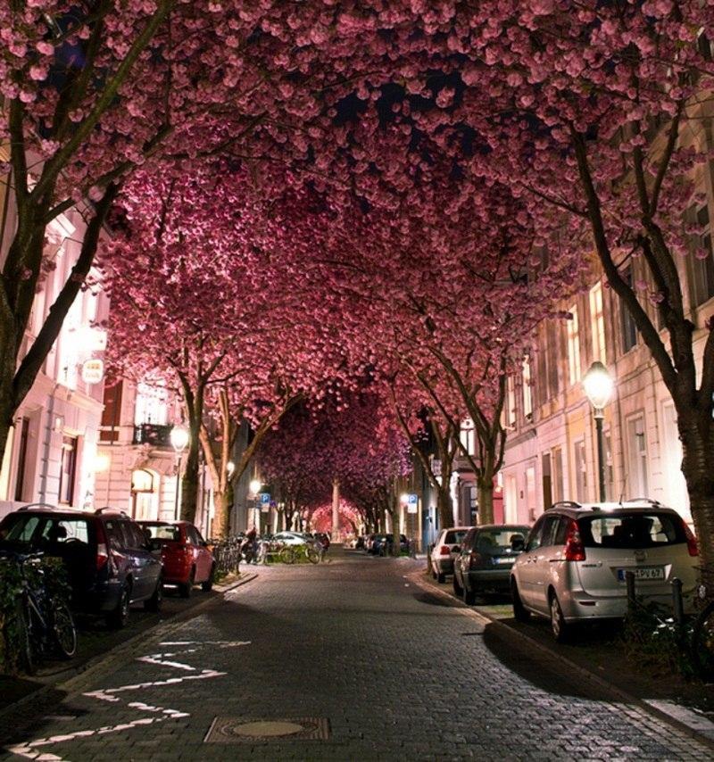 Самые красивые фото и картинки улицы - подборка 20 фотографий 20