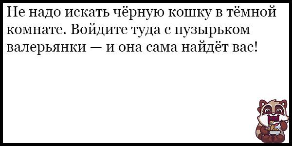 Смешные анекдоты про животных и питомцев до слез - подборка №128 10
