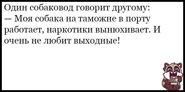 Смешные анекдоты про животных и питомцев до слез - подборка №128 11
