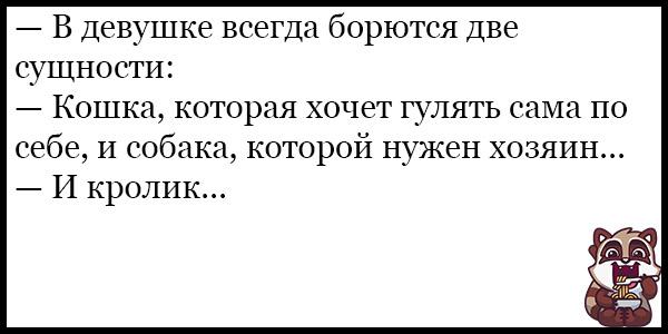 Смешные анекдоты про животных и питомцев до слез - подборка №128 12