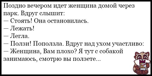 Смешные анекдоты про животных и питомцев до слез - подборка №128 14