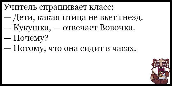 Смешные анекдоты про животных и питомцев до слез - подборка №128 2