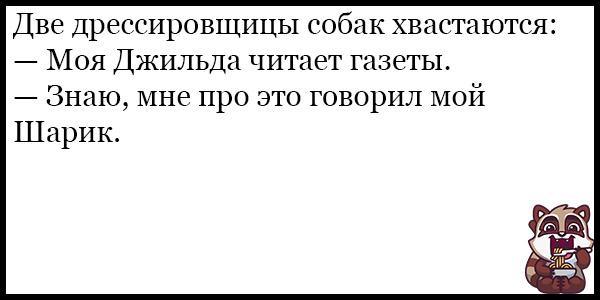 Смешные анекдоты про животных и питомцев до слез - подборка №128 3