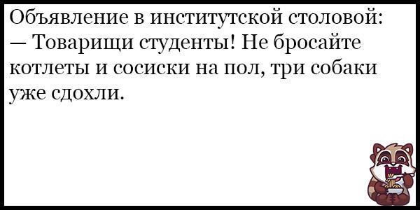 Смешные анекдоты про животных и питомцев до слез - подборка №128 5