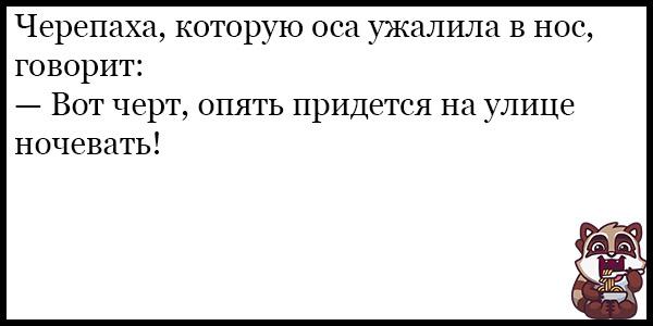 Смешные анекдоты про животных и питомцев до слез - подборка №128 9