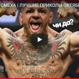 Смешные видео приколы до слез за осень 2018 - подборка №144