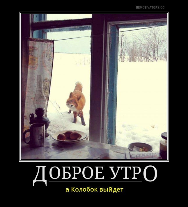 Смешные и забавные картинки про зиму и снег - подборка 9