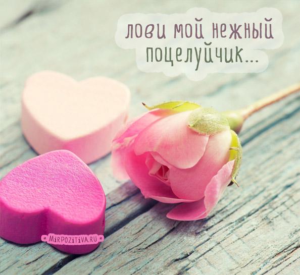 Красивые и милые картинки моей обожульке, открытки для любимой 2