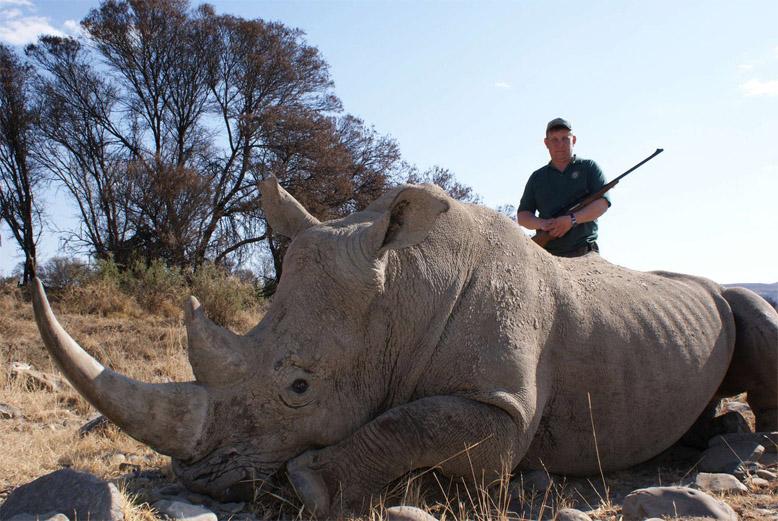 Красивые и прикольные картинки белого носорога - подборка 12