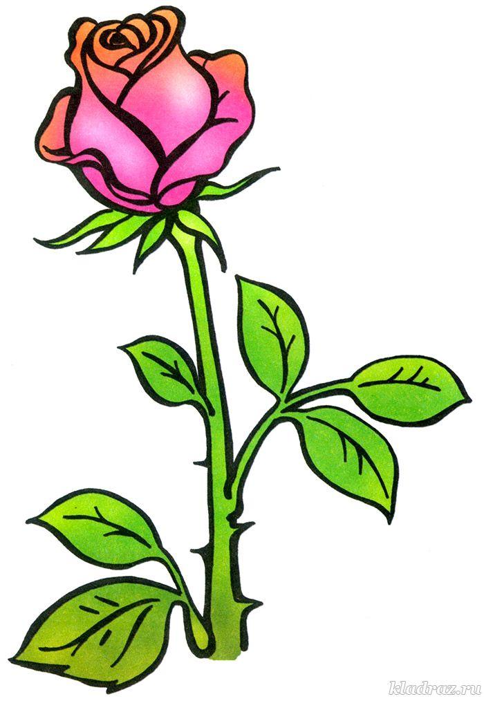 Красивые картинки и рисунки розы для детей - прикольная подборка 11