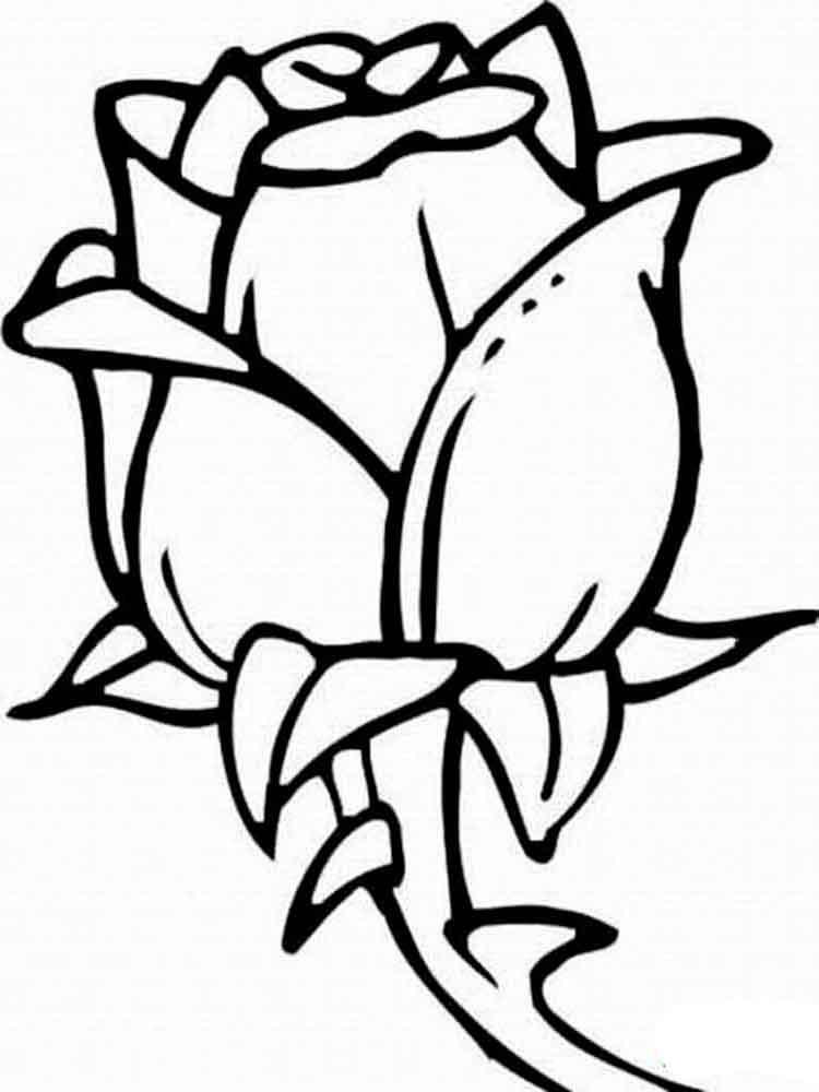 Красивые картинки и рисунки розы для детей - прикольная подборка 7