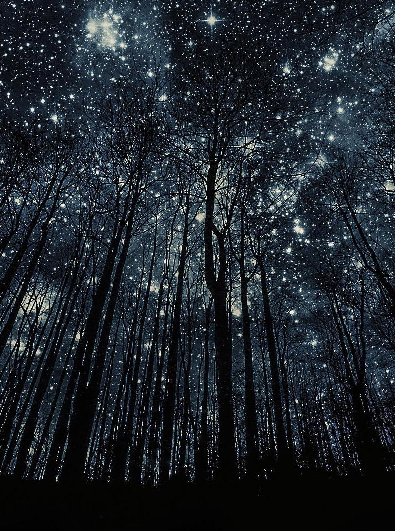 Красивые картинки на телефон Звездное небо на заставку - подборка 15