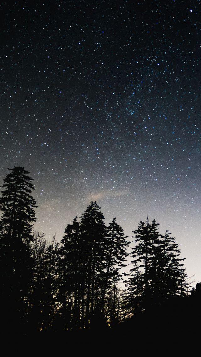 Красивые картинки на телефон Звездное небо на заставку - подборка 8