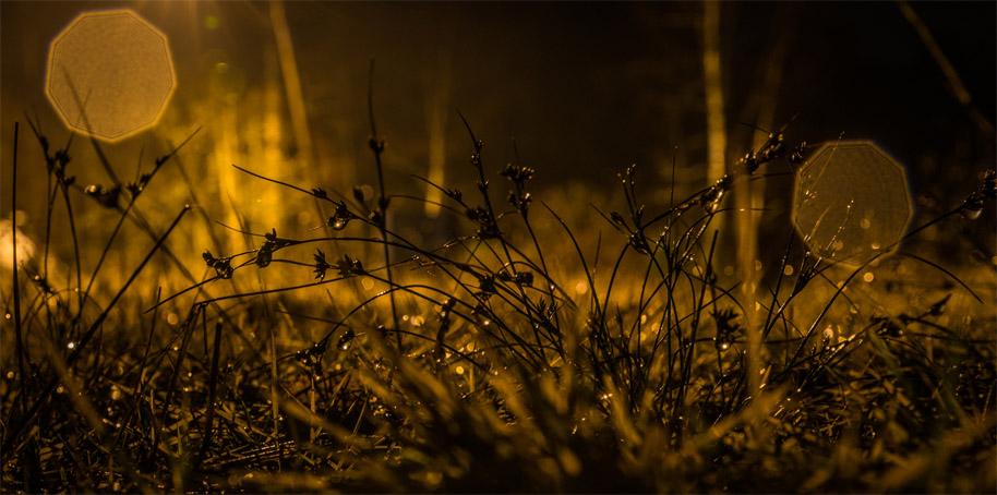 Осенняя ночь картинки и фотографии - очень красивые 12
