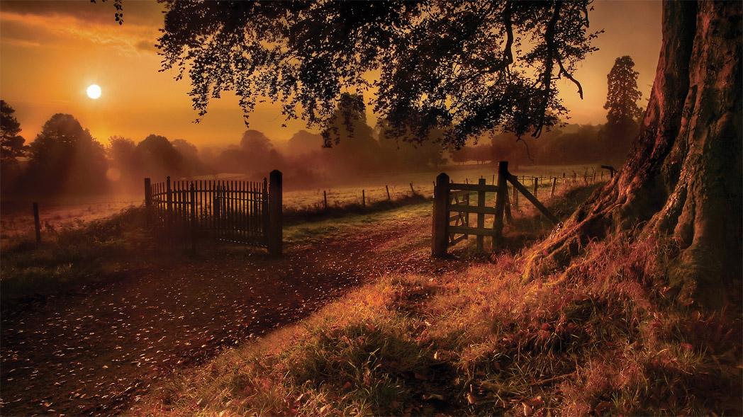 Осенняя ночь картинки и фотографии - очень красивые 16
