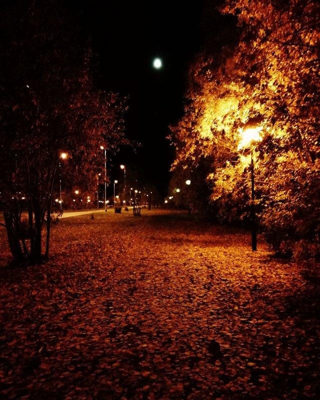Осенняя ночь картинки и фотографии - очень красивые 2