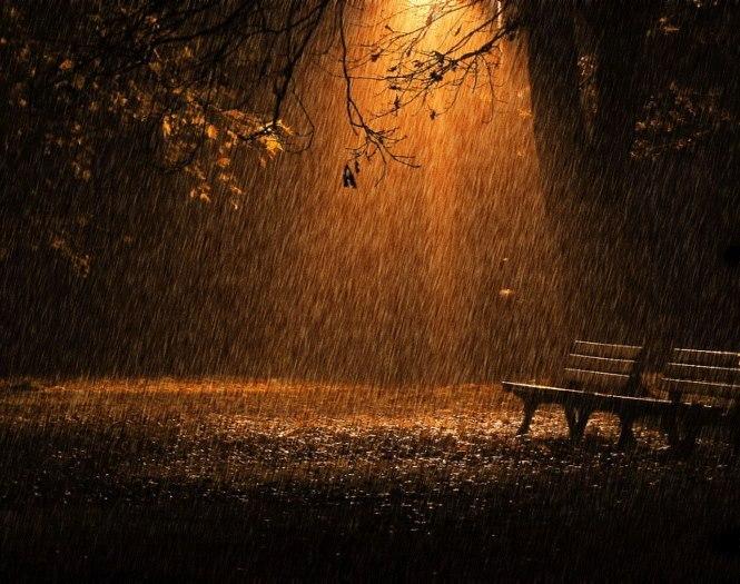Осенняя ночь картинки и фотографии - очень красивые 7