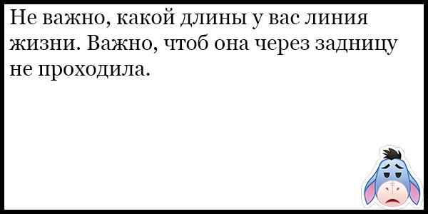Очень смешные и ржачные анекдоты за ноябрь - подборка №130 13