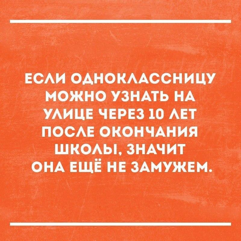 Подборка смешных картинок с надписями до слез - сборка №100 14